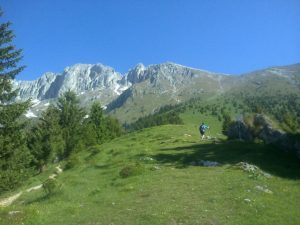 Sentiero per Monte Visolo